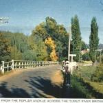 Looking Across The Tumut Bridge