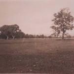 Tumut Racecourse 1939